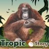 Tropicstory - Tropicstory player