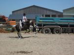 Praline et moi - Pony (5 years)